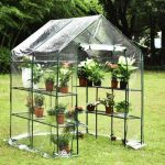 10 Best Small Greenhouse in Reviews